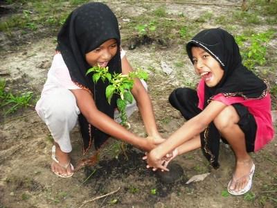 Organic Farming in Ban Talae Nok, Thailand